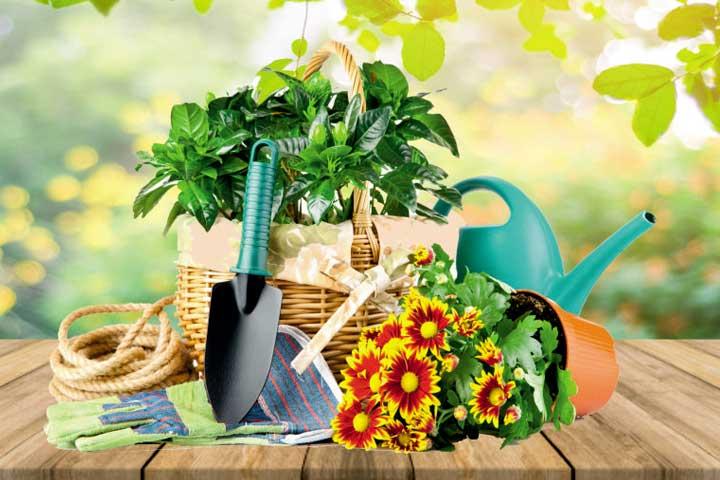 до -30% «Все для сада и огорода»